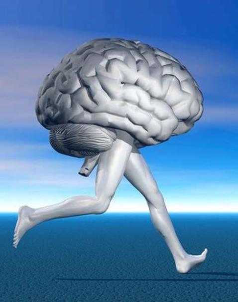 Fisioterapia y Salud Mental